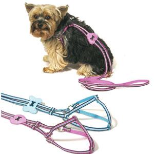 Grosgrain Ribbon Dog Harness -Leash Combo