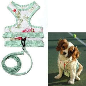 Potpourri Ruffle Dog Harness & Leash