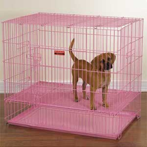 pink puppy crate