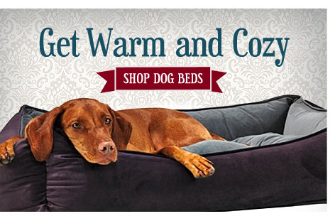 Get Warm and Cozy - Shop Dog Beds