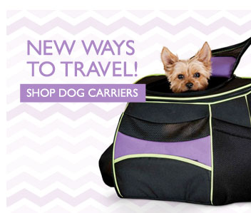 New Ways to Travel! - Shop Dog Carriers