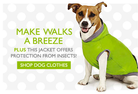 Make Walks a Breeze - Plus this jacket offers protections from insects! - Shop Dog Clothes