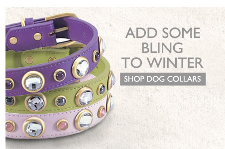 Add Some Bling to Winter - Shop Dog Collars