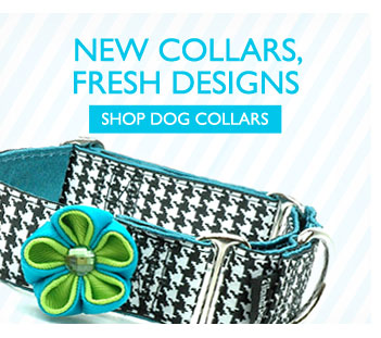 New Collars, Fresh Designs - Shop Dog Collars