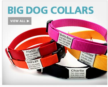 Big Dog Collars-View All