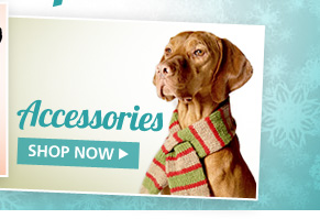 Dog Accessories. Shop Now.