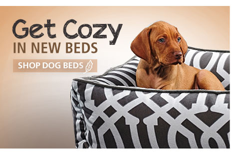 Get Cozy in New Beds. Shop Dog Beds.