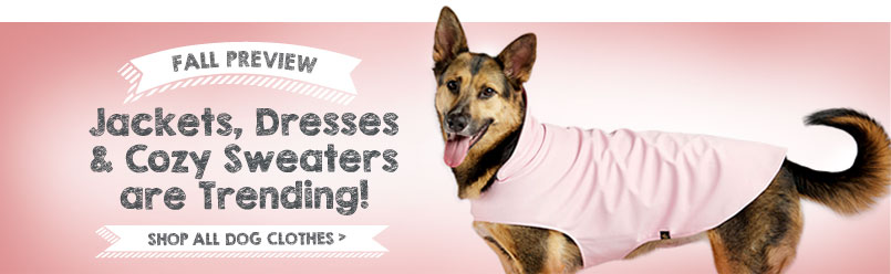Jackets, Dresses & Cozy Sweaters are trending! Shop all dog clothes.