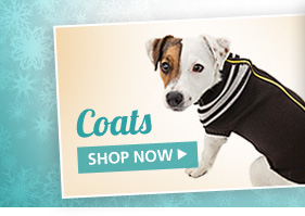Dog Coats. Shop Now.