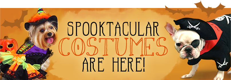 Spooktacular Halloween Costumes Are Here!