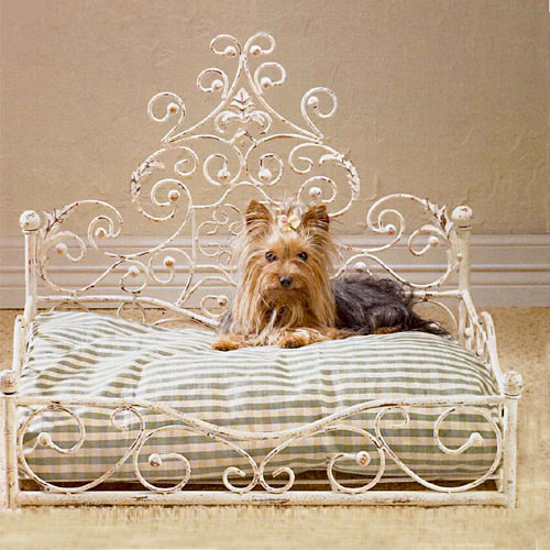 antiqued fancy scroll dog bed beds for your pampered chihuahua cheap luxury uk stylish small dogs