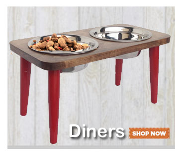 Raised dog feeders! Shop raised dog bowl stands—Click Here