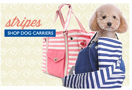 Summer Dog Carriers! Shop Dog Carriers—Click Here